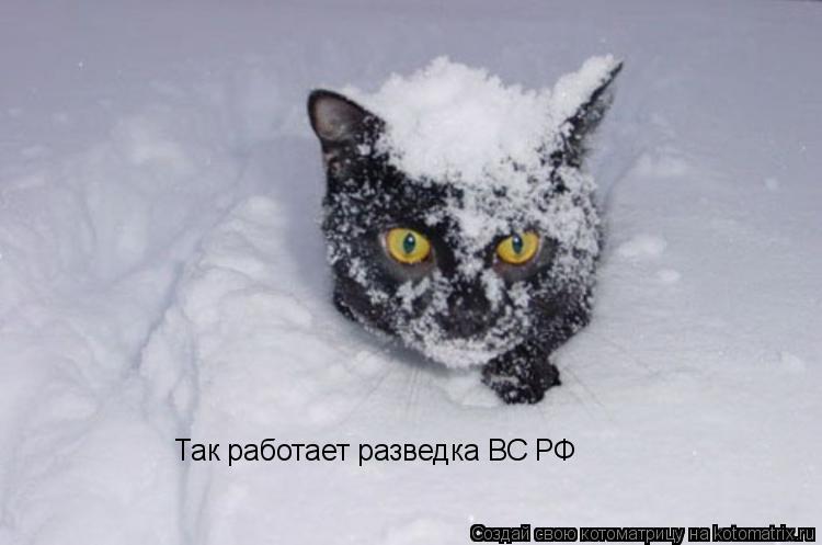 Котоматрица: Так работает разведка ВС РФ