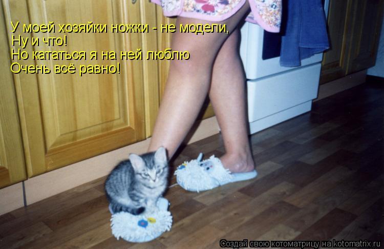 Котоматрица: У моей хозяйки ножки - не модели, Ну и что! Но кататься я на ней люблю Очень всё равно!