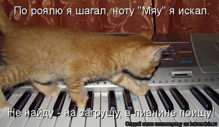 """Котоматрица: По роялю я шагал, ноту """"Мяу"""" я искал. Не найду - на загрущу, в пианине поищу!"""