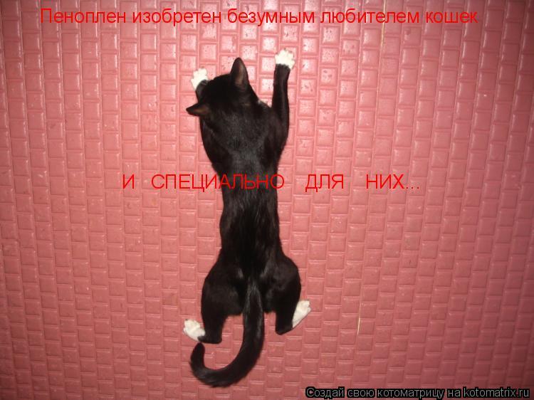 Котоматрица: Пеноплен изобретен безумным любителем кошек И   СПЕЦИАЛЬНО    ДЛЯ    НИХ...