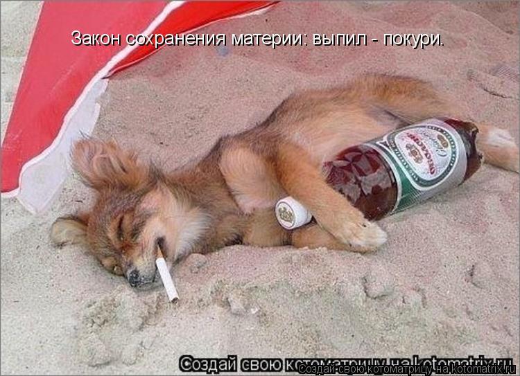 Котоматрица: Закон сохранения материи: выпил - покури.