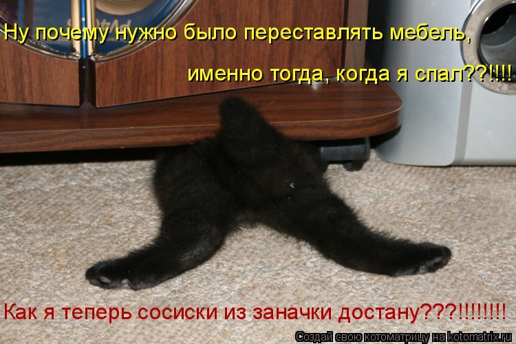 Котоматрица: именно тогда, когда я спал??!!!!  Ну почему нужно было переставлять мебель,  Как я теперь сосиски из заначки достану???!!!!!!!!