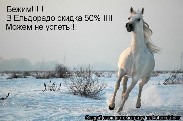 Котоматрица: Бежим!!!!! В Ельдорадо скидка 50% !!!! Можем не успеть!!!