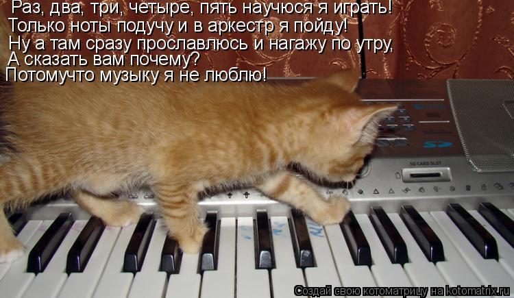 Котоматрица: Раз, два, три, четыре, пять научюся я играть! Только ноты подучу и в аркестр я пойду! Ну а там сразу прославлюсь и нагажу по утру, А сказать вам