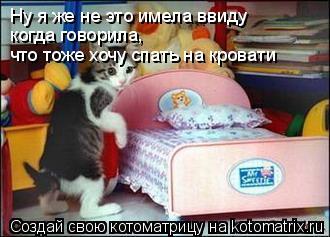 Котоматрица: Ну я же не это имела ввиду когда говорила, что тоже хочу спать на кровати