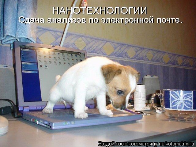 Котоматрица: НАНОТЕХНОЛОГИИ Сдача анализов по электронной почте.