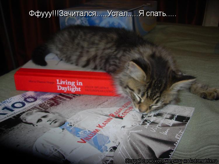 Котоматрица: Ффууу!!!Зачитался.....Устал.....Я спать.....