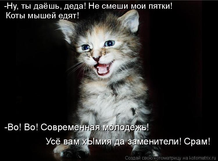 Котоматрица: -Ну, ты даёшь, деда! Не смеши мои пятки! Коты мышей едят! -Во! Во! Современная мòлодежь! Усё вам хЫмия да заменители! Срам!