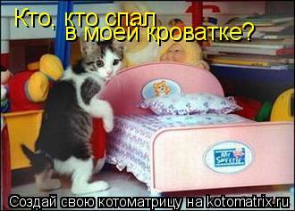 Котоматрица: Кто, кто спал  в моей кроватке?