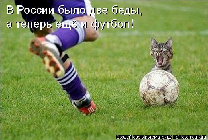 Котоматрица: В России было две беды,  а теперь ещё и футбол!