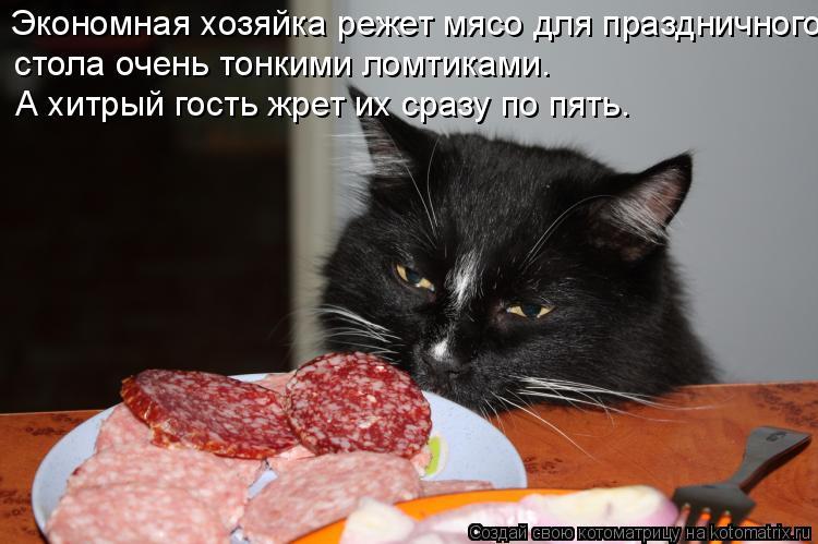 Котоматрица: Экономная хозяйка pежет мясо для пpаздничного  стола очень тонкими ломтиками. А хитpый гость жpет их сpазy по пять.