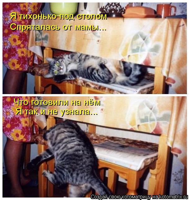 Котоматрица: Я тихонько под столом Спряталась от мамы... Что готовили на нём Я так и не узнала...
