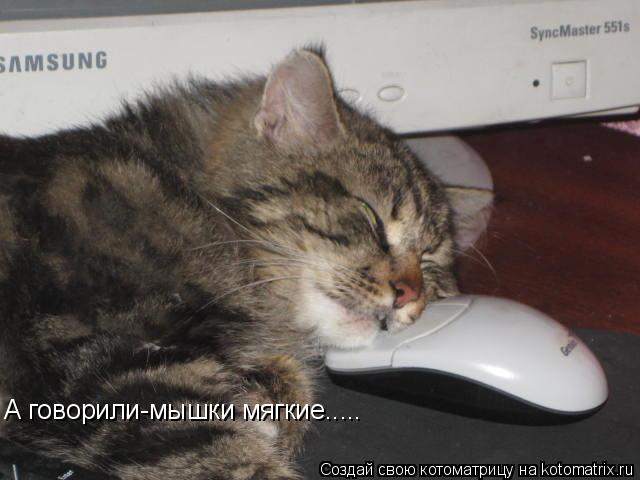Котоматрица: А говорили-мышки мягкие.....