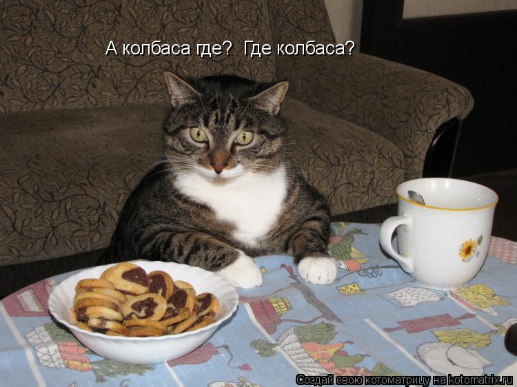 Котоматрица: А колбаса где?  Где колбаса?