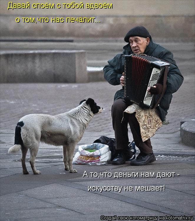 Котоматрица: Давай споём с тобой вдвоём о том,что нас печалит... А то,что деньги нам дают -  искусству не мешает!