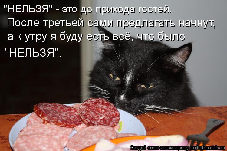 http://kotomatrix.ru/images/lolz/2009/06/14/ml.jpg
