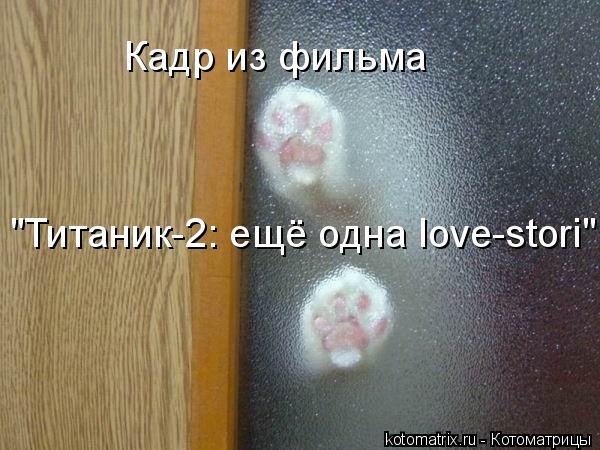"Котоматрица: Кадр из фильма  ""Титаник-2: ещё одна love-stori"""