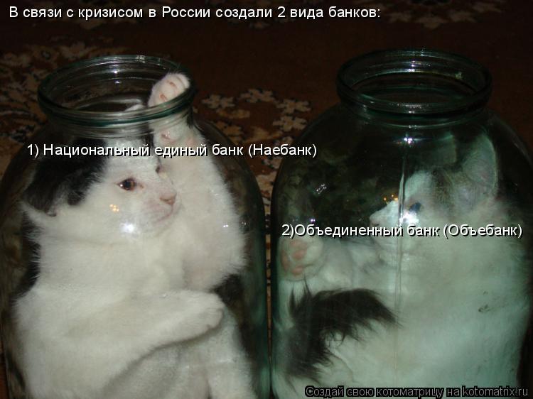 Котоматрица: В связи с кризисом в России создали 2 вида банков: 1) Национальный единый банк (Наебанк) 2)Объединенный банк (Объебанк)