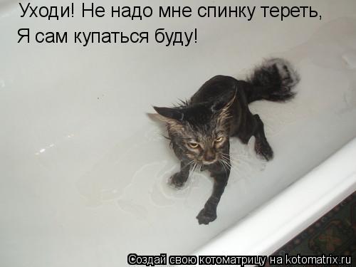 Котоматрица: Уходи! Не надо мне спинку тереть, Я сам купаться буду!