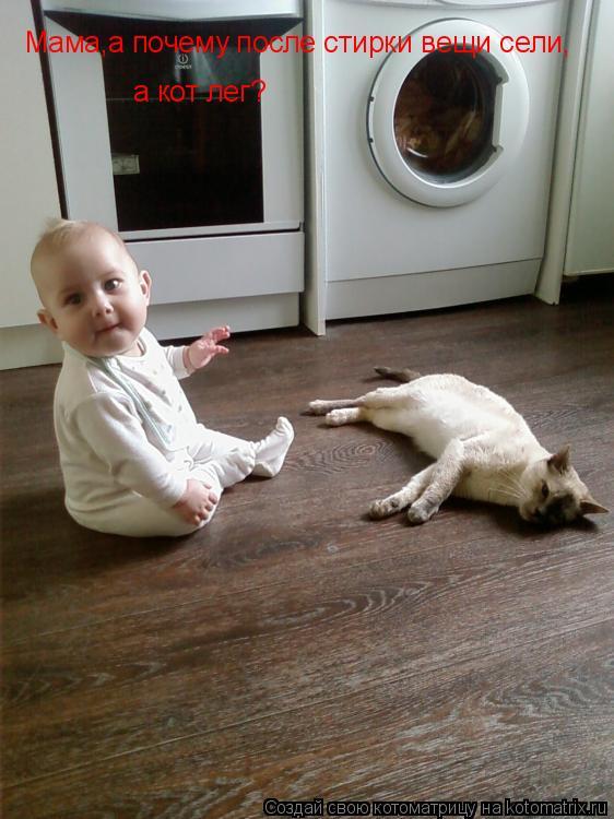 Котоматрица: Мама,а почему после стирки вещи сели, а кот лег?