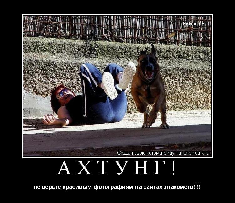 Котоматрица: ахтунг! не верьте красивым фотографиям на сайтах знакомств!!!!