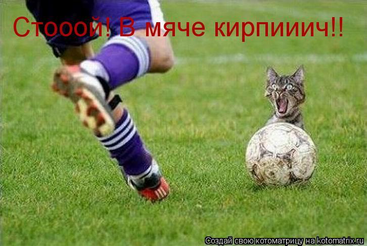 Котоматрица: Стооой! В мяче кирпииич!!