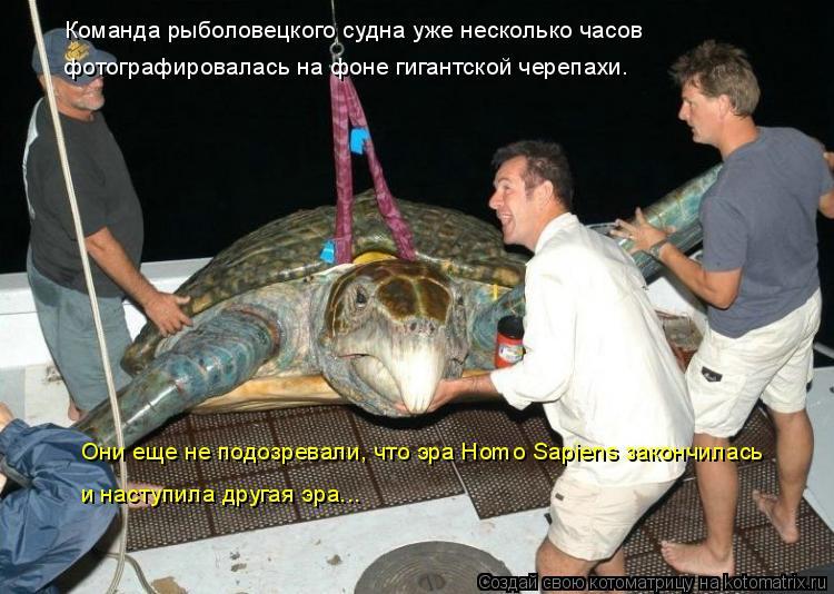 Котоматрица: Команда рыболовецкого судна уже несколько часов  фотографировалась на фоне гигантской черепахи. Они еще не подозревали, что эра Homo Sapiens зак