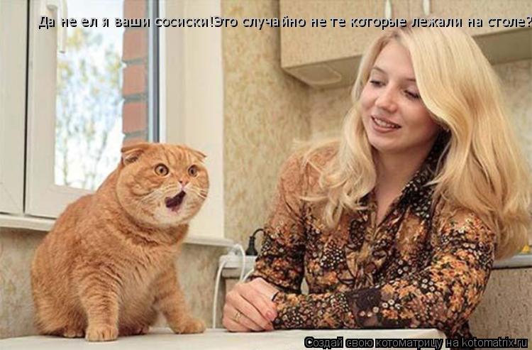 Котоматрица: Да не ел я ваши сосиски!Это случайно не те которые лежали на столе?