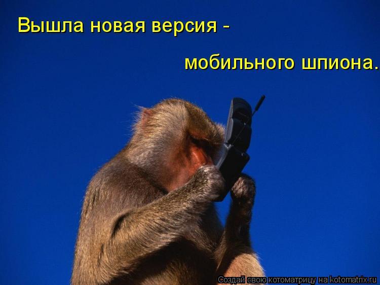 Котоматрица: Вышла новая версия - мобильного шпиона.