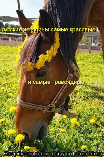 Котоматрица: русские женщины самые красивые! и самые травоядные