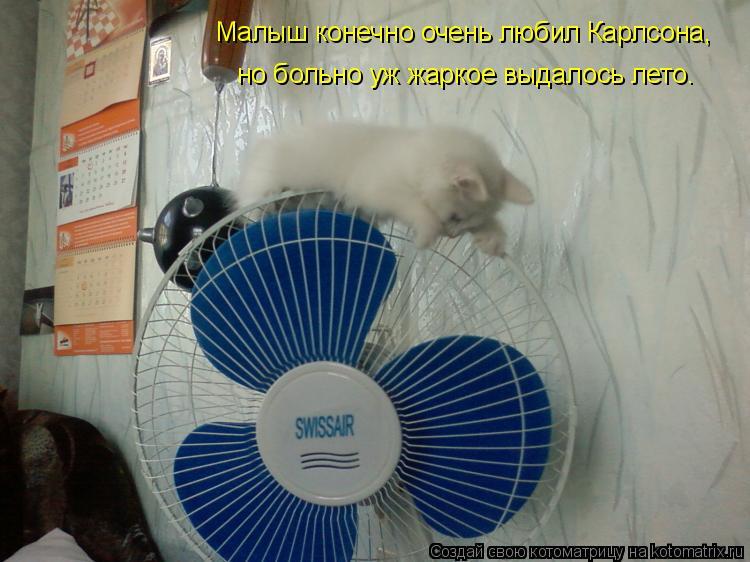 Котоматрица: Малыш конечно очень любил Карлсона, но больно уж жаркое выдалось лето.