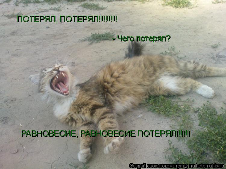 Котоматрица: ПОТЕРЯЛ, ПОТЕРЯЛ!!!!!!!! Ч Ч - Чего потерял? РАВНОВЕСИЕ, РАВНОВЕСИЕ ПОТЕРЯЛ!!!!!!