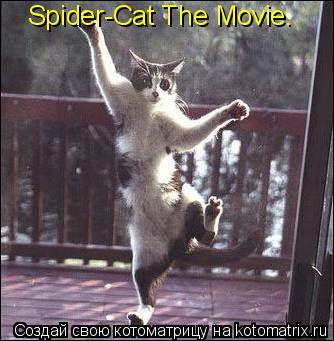 Котоматрица: Spider-Cat The Movie.