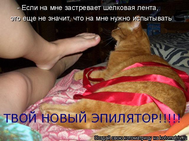 Котоматрица: - Если на мне застревает шелковая лента, это еще не значит, что на мне нужно испытывать  ТВОЙ НОВЫЙ ЭПИЛЯТОР!!!!!