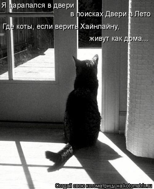 Котоматрица: Я царапался в двери в поисках Двери в Лето Где коты, если верить Хайнлайну, живут как дома...
