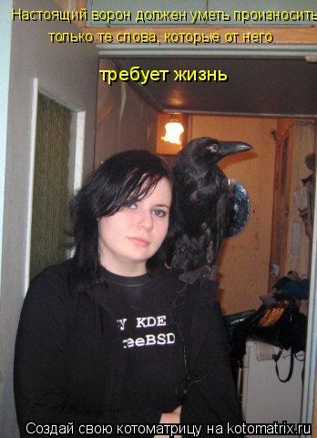 Котоматрица: Настоящий ворон должен уметь произносить  только те слова, которые от него  требует жизнь