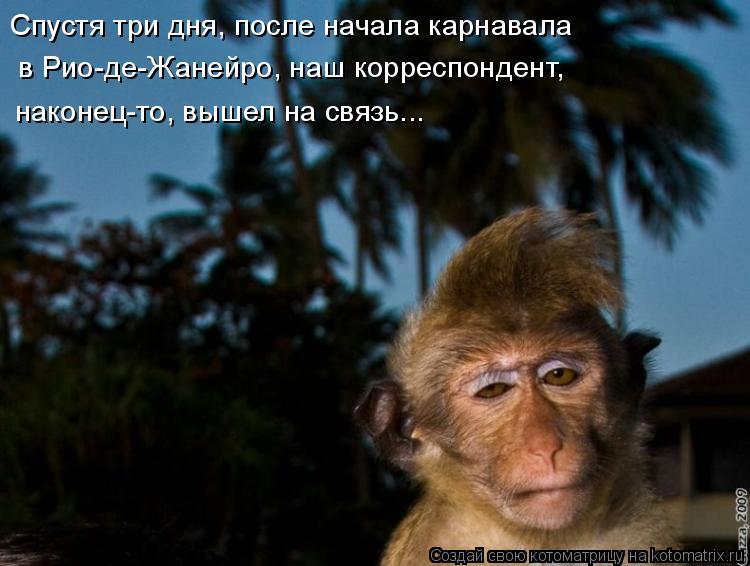 http://kotomatrix.ru/images/lolz/2009/06/15/On.jpg
