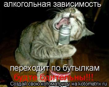 Котоматрица: алкогольная зависимость переходит по бутылкам будте бдительны!!!