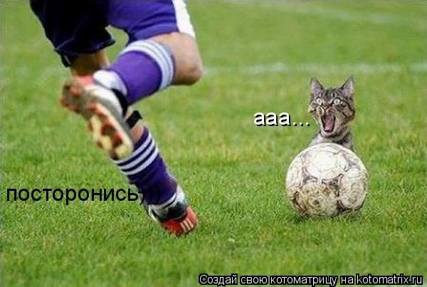 Котоматрица: ааа... посторонись)))