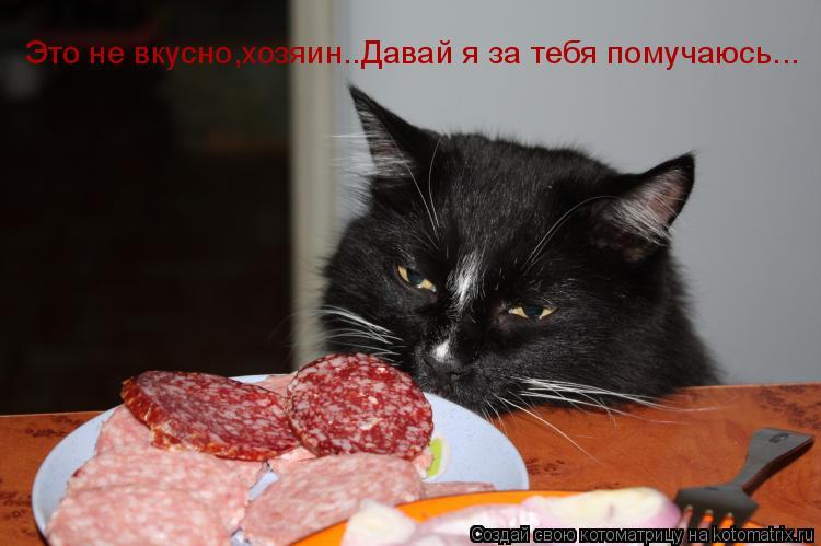 Котоматрица: Это не вкусно,хозяин..Давай я за тебя помучаюсь...