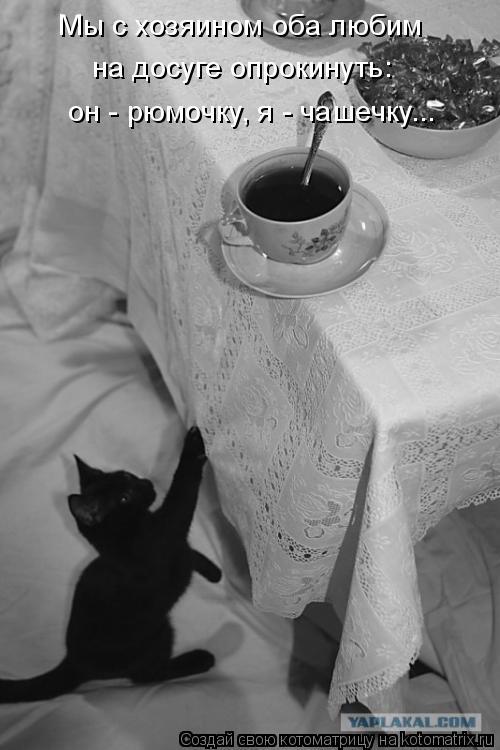 Котоматрица: Мы с хозяином оба любим  на досуге опрокинуть: он - рюмочку, я - чашечку...