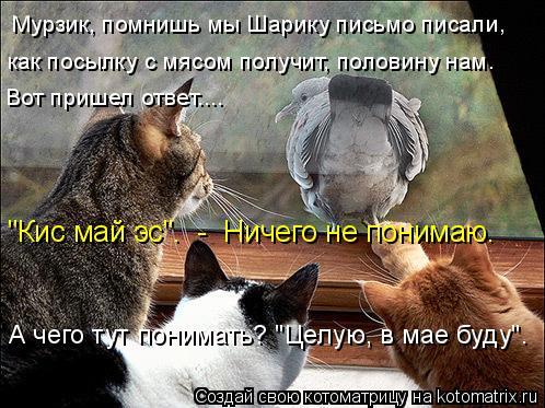"""Котоматрица: Мурзик, помнишь мы Шарику письмо писали,  как посылку с мясом получит, половину нам.  """"Кис май эс"""".  -  Ничего не понимаю. А чего тут понимать? """"Це"""