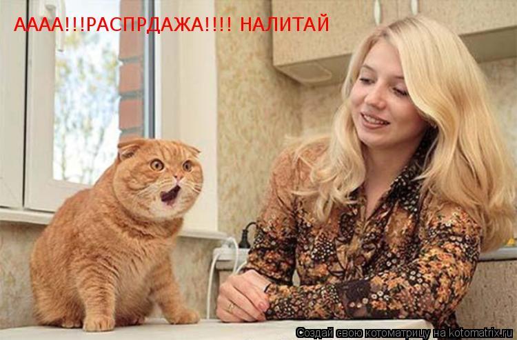 Котоматрица: АААА!!!РАСПРДАЖА!!!! НАЛИТАЙ