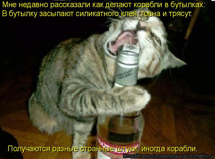 Котоматрица: Мне недавно рассказали как делают корабли в бутылках: В бутылку засыпают силикатного клея, говна и трясут. Получаются разные странные штук