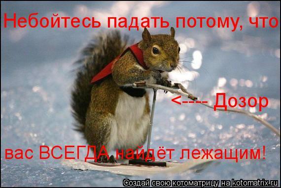 Котоматрица: Небойтесь падать потому, что  <---- Дозор  вас ВСЕГДА найдёт лежащим!