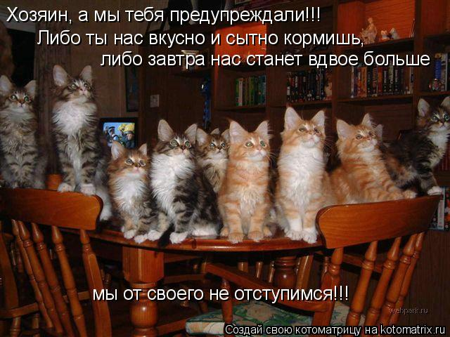 Котоматрица: Хозяин, а мы тебя предупреждали!!! Либо ты нас вкусно и сытно кормишь,  либо завтра нас станет вдвое больше мы от своего не отступимся!!!