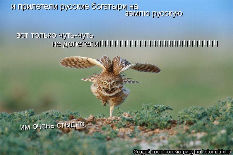 Котоматрица: и прилетели русские богатыри на  землю русскую вот только чуть-чуть  не долетели!!!!!!!!!!!!!!!!!!!!!!!!!!!!!!!!!!!!!!!!!!!!!!!! им очень стыдно.