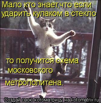 Котоматрица: Мало кто знает,что если ударить кулаком в стекло то получится схема московского метрополитена.