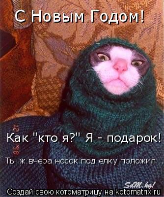 """Котоматрица: С Новым Годом! Как """"кто я?"""" Я - подарок!  Ты ж вчера носок под елку положил...."""