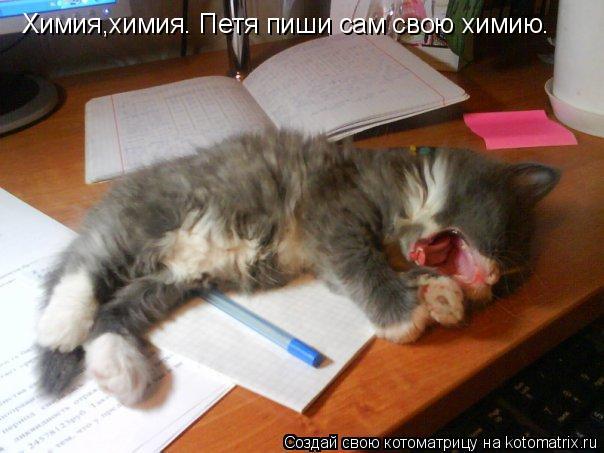 Котоматрица: Химия,химия. Петя пиши сам свою химию.